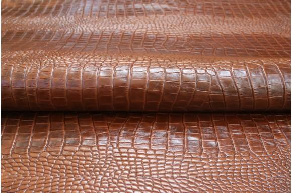 V-center Солофра рептилія