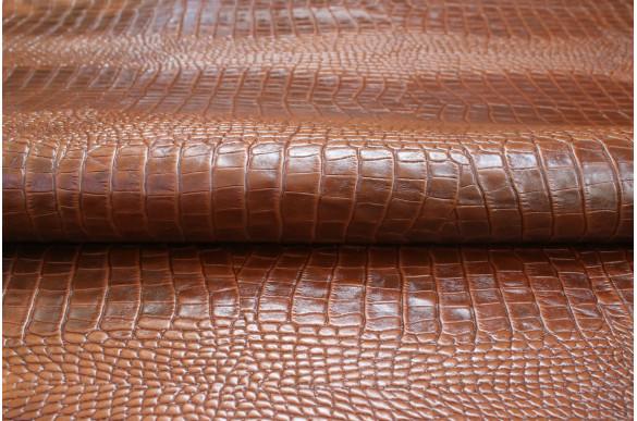 Солофра рептилия